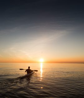 paddle-839814